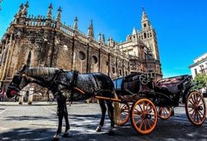 八个习惯带你走进西班牙日常生活
